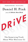 Drive book cover