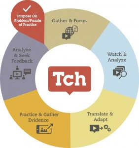 Tch Theory of Professional Learning