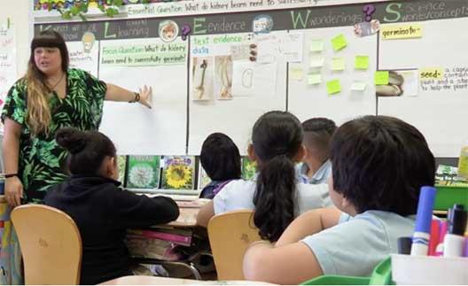 teacher using KLEWS strategy