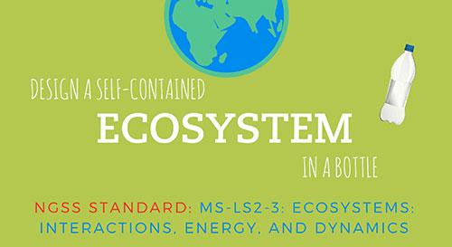 Ecology in a Bottle
