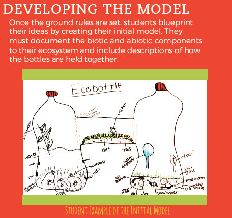 Developing the Model graphic - student example