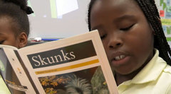 Informational Texts: Reading for Inquiry